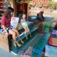 Fish Spa in Chiang Mai