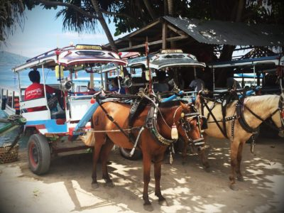 Ponies on Gili Air