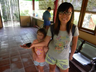 Kenmenuh Butterfly Park